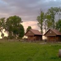 domki
